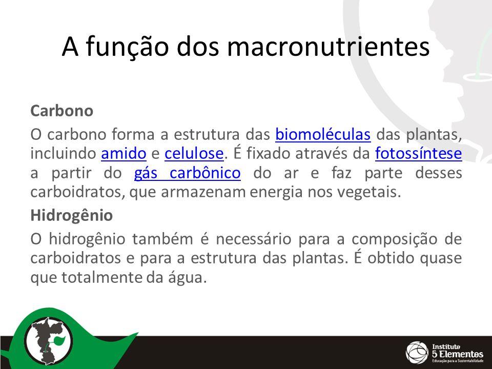 A função dos macronutrientes Carbono O carbono forma a estrutura das biomoléculas das plantas, incluindo amido e celulose.