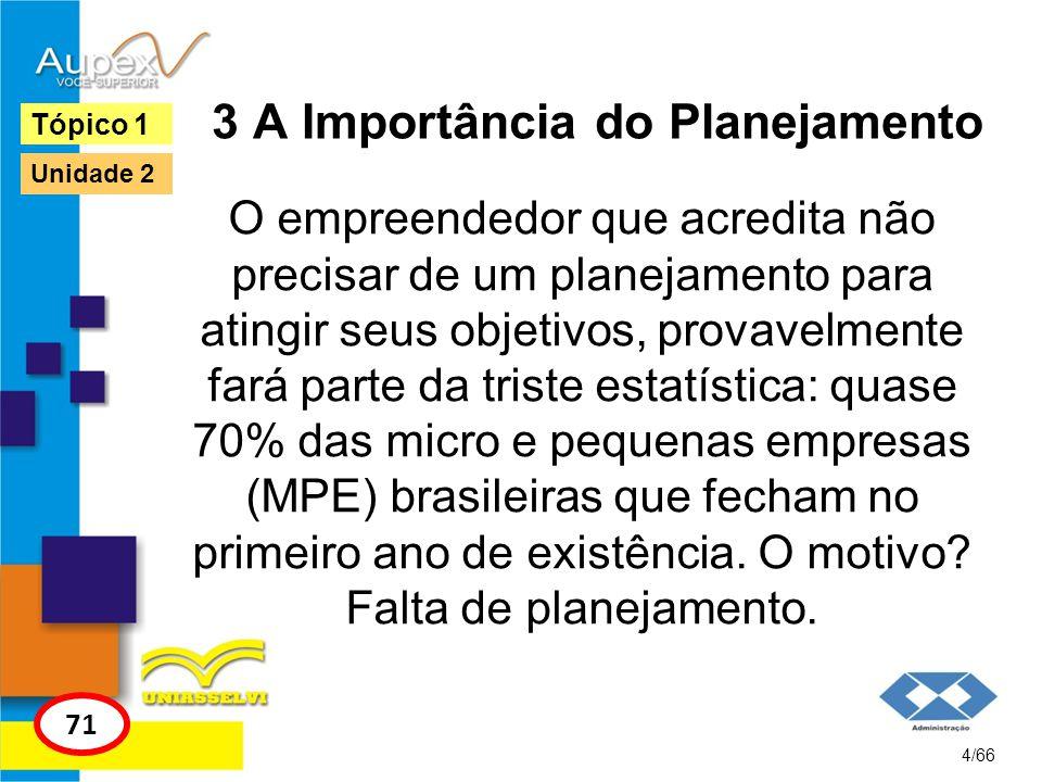 3 A Importância do Planejamento O empreendedor que acredita não precisar de um planejamento para atingir seus objetivos, provavelmente fará parte da t