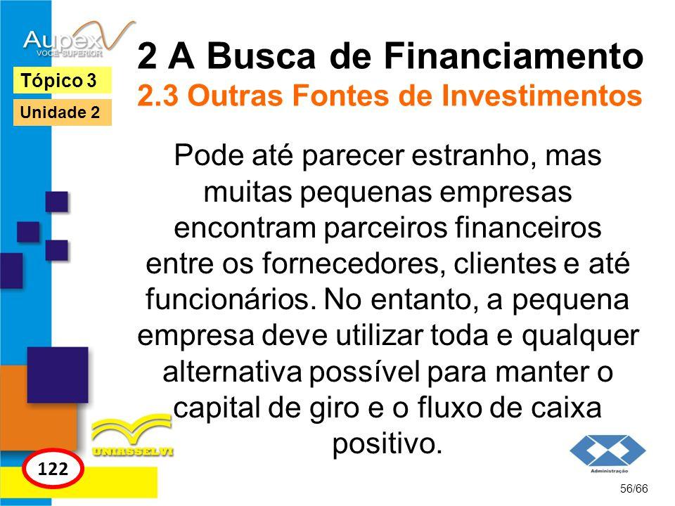 2 A Busca de Financiamento 2.3 Outras Fontes de Investimentos Pode até parecer estranho, mas muitas pequenas empresas encontram parceiros financeiros
