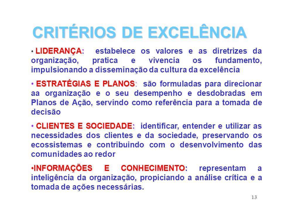 13 LIDERANÇA: LIDERANÇA: estabelece os valores e as diretrizes da organização, pratica e vivencia os fundamento, impulsionando a disseminação da cultu