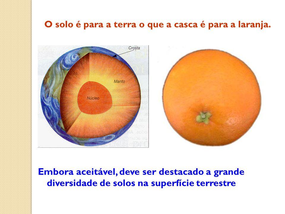 Embora aceitável, deve ser destacado a grande diversidade de solos na superfície terrestre O solo é para a terra o que a casca é para a laranja.