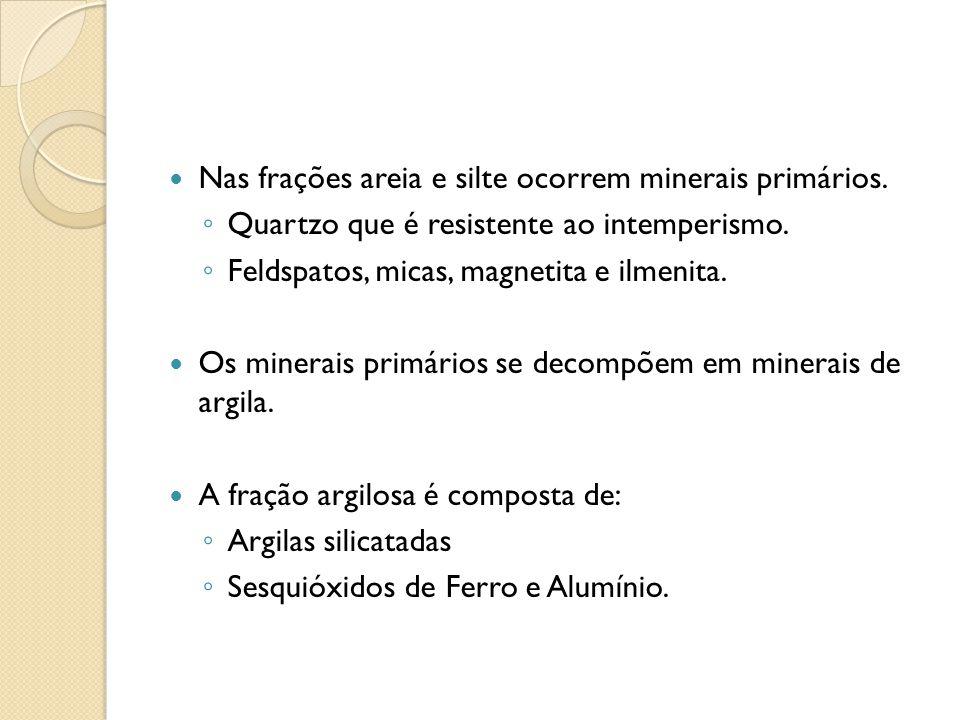 Nas frações areia e silte ocorrem minerais primários. Quartzo que é resistente ao intemperismo. Feldspatos, micas, magnetita e ilmenita. Os minerais p