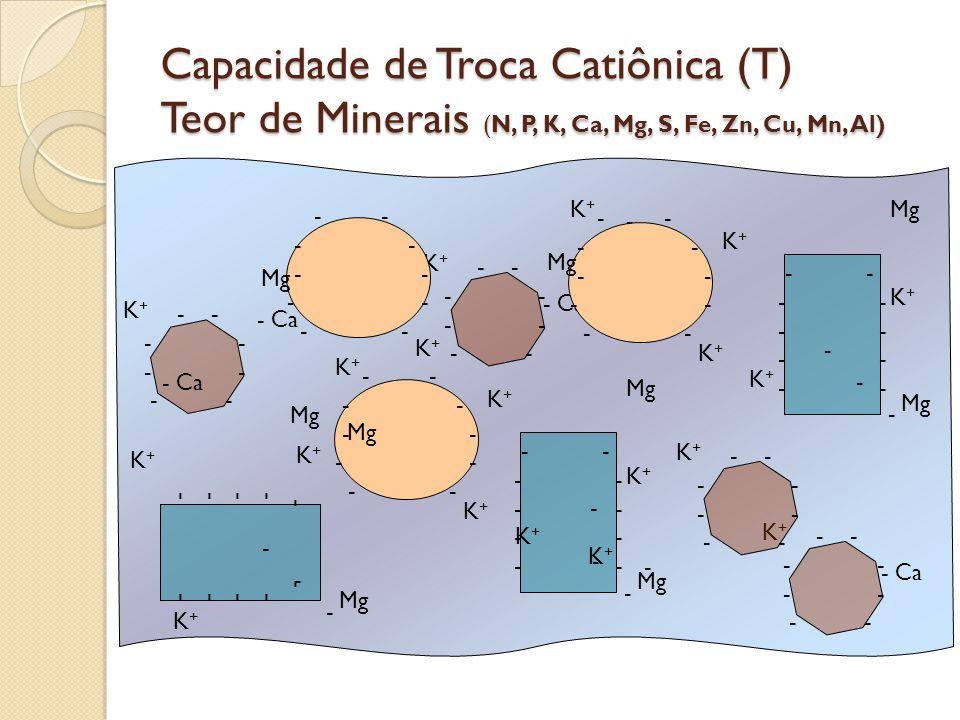 Capacidade de Troca Catiônica (T) Teor de Minerais (N, P, K, Ca, Mg, S, Fe, Zn, Cu, Mn, Al) - Ca Mg - - - - - K+K+ - - - - - - - K+K+ K+K+ K+K+ K+K+ K