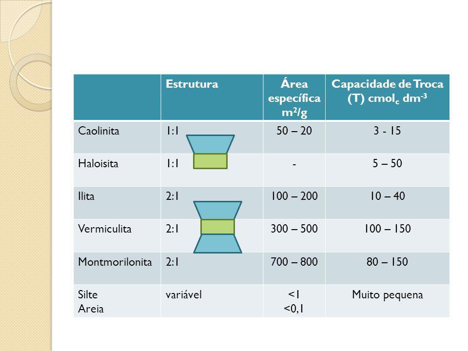 EstruturaÁrea específica m 2 /g Capacidade de Troca (T) cmol c dm -3 Caolinita1:150 – 203 - 15 Haloisita1:1-5 – 50 Ilita2:1100 – 20010 – 40 Vermiculit