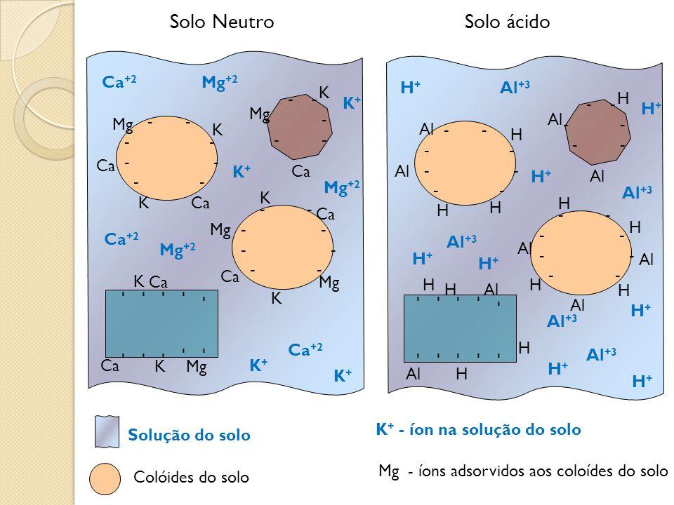 K+K+ - - - - - Solo ácidoSolo Neutro K - - Mg - - - - - Ca +2 Mg +2 K+K+ K K Ca K K K K Mg Ca Mg K+K+ K+K+ H+H+ - - - - - H - - Al - - - - - - - H+H+