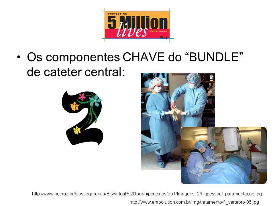Os componentes CHAVE do BUNDLE de cateter central: http://www.fiocruz.br/biosseguranca/Bis/virtual%20tour/hipertextos/up1/Imagens_2/higpessoal_paramentacao.jpg http://www.embolution.com.br/img/tratamento/fi_vertebro-05.jpg