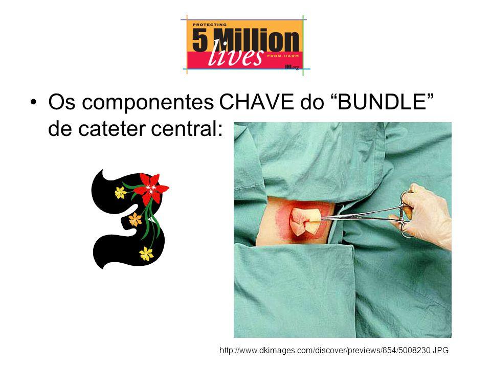 Os componentes CHAVE do BUNDLE de cateter central: http://www.dkimages.com/discover/previews/854/5008230.JPG