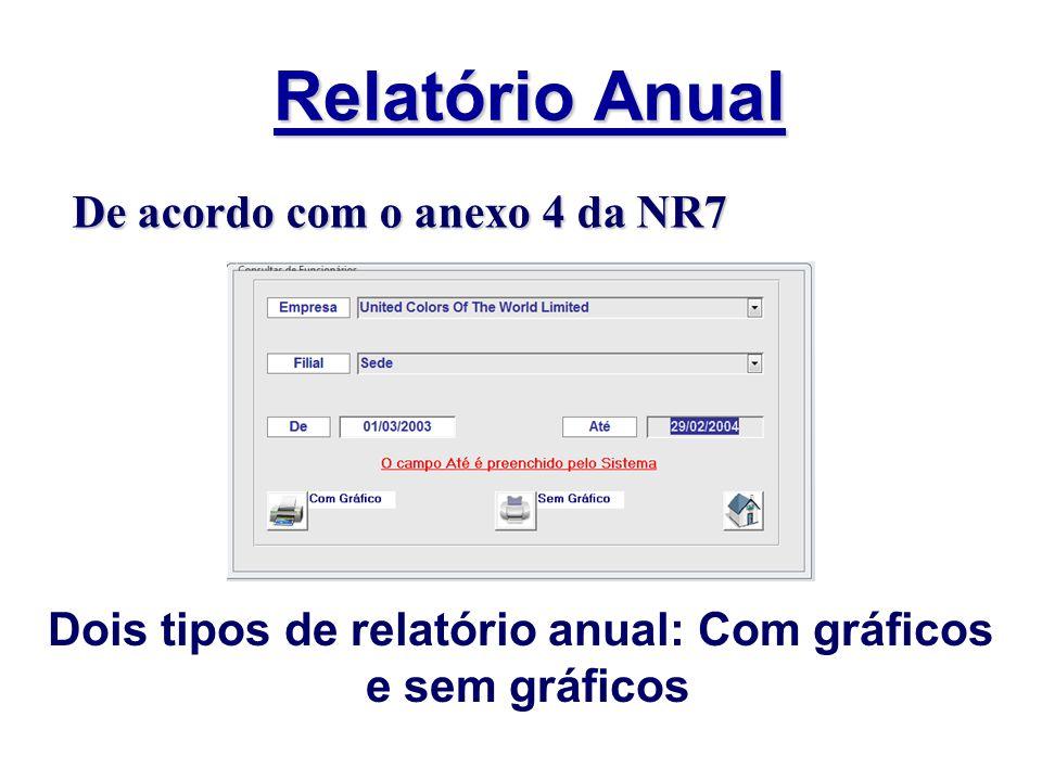 Relatório Anual Dois tipos de relatório anual: Com gráficos e sem gráficos De acordo com o anexo 4 da NR7