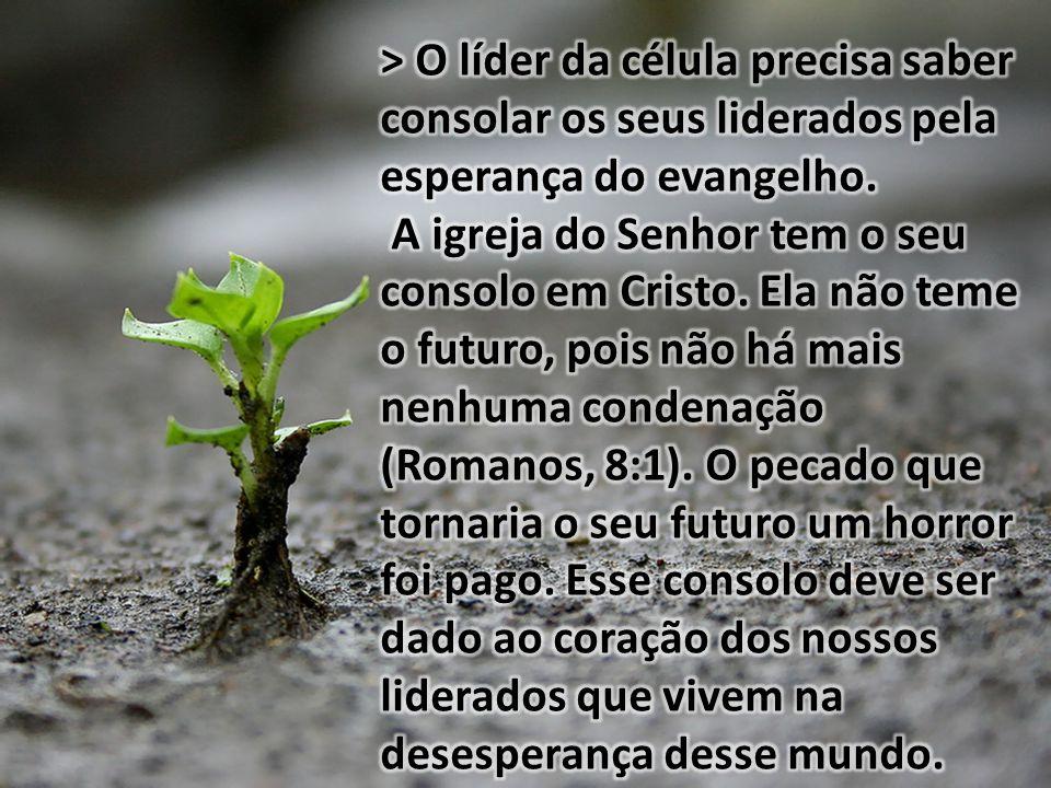 II.MANTER AS OVELHAS UNIDAS PELO AMOR UMAS ÀS OUTRAS NA CÉLULA (v.2b...