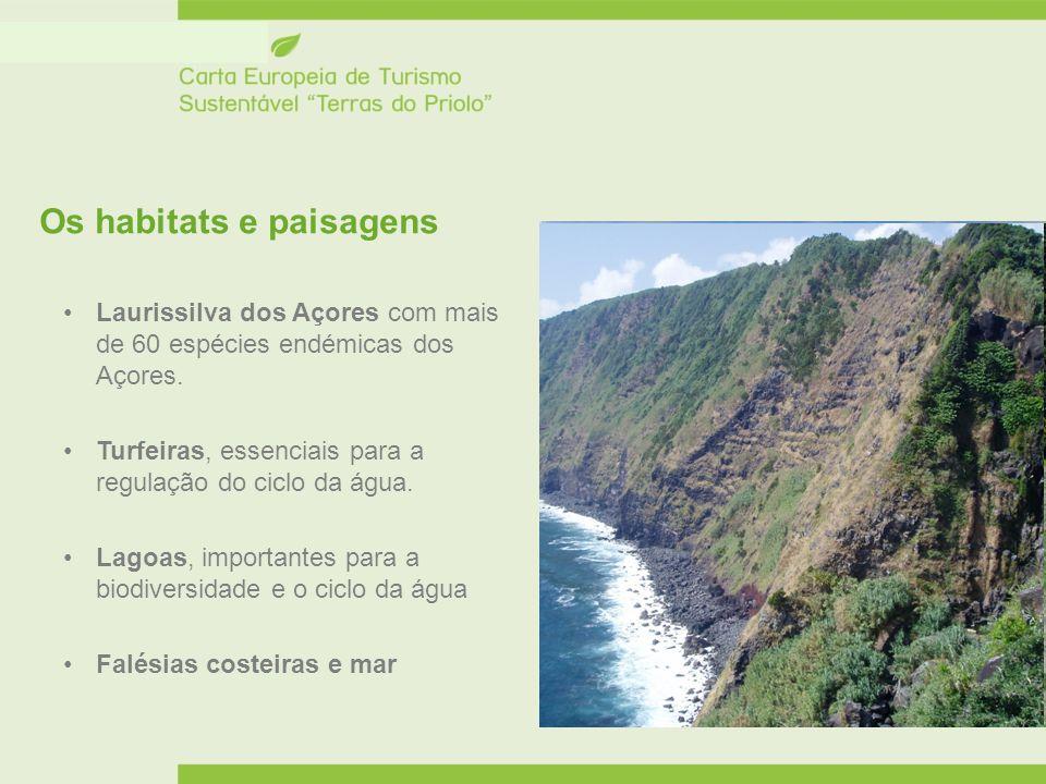 Os habitats e paisagens Laurissilva dos Açores com mais de 60 espécies endémicas dos Açores. Turfeiras, essenciais para a regulação do ciclo da água.