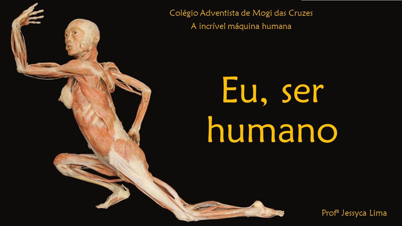Eu, ser humano Colégio Adventista de Mogi das Cruzes A incrível máquina humana Profª Jessyca Lima