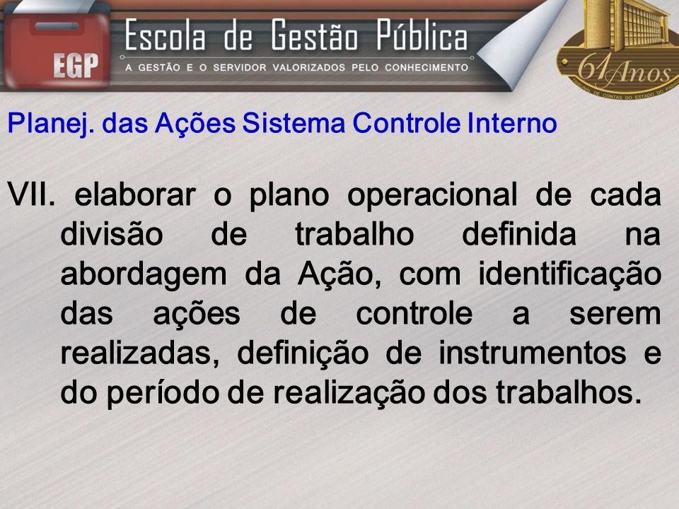 Planej. das Ações Sistema Controle Interno VII. elaborar o plano operacional de cada divisão de trabalho definida na abordagem da Ação, com identifica