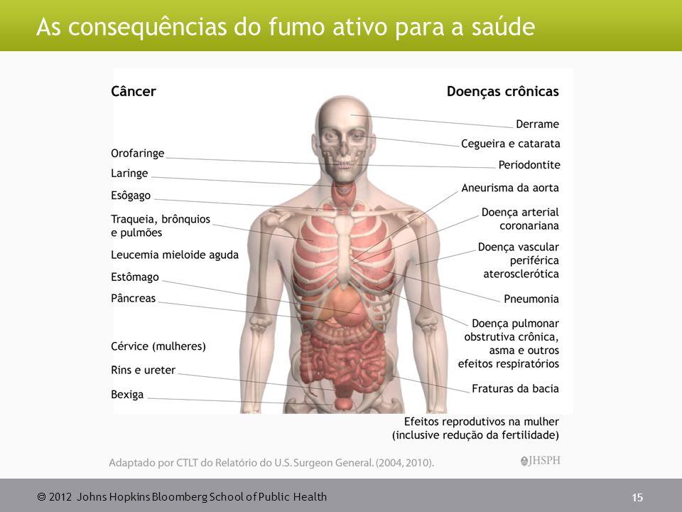 2012 Johns Hopkins Bloomberg School of Public Health As consequências do fumo ativo para a saúde 15