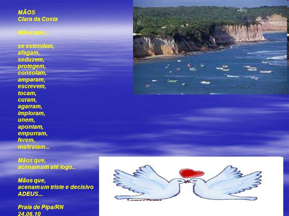 AMIGOS SÃO FLORES E POEMAS Clara da Costa Amigos são flores e poemas, companheiros enviados pelo Criador, nesse elo de proteção, para o aconchego de n