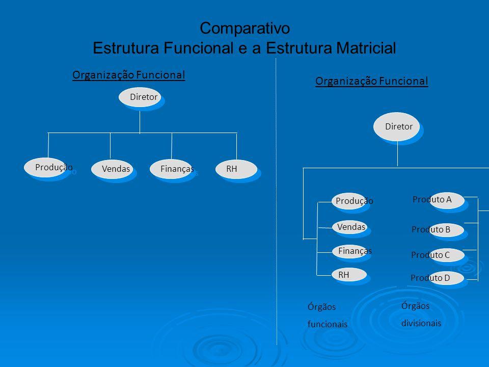 Vendas Finanças Produção Diretor Organização Funcional Comparativo Estrutura Funcional e a Estrutura Matricial Finanças Vendas Produção RH Produto A P