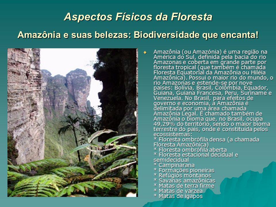 Aspectos Físicos da Floresta Amazônia e suas belezas: Biodiversidade que encanta! Amazônia (ou Amazónia) é uma região na América do Sul, definida pela