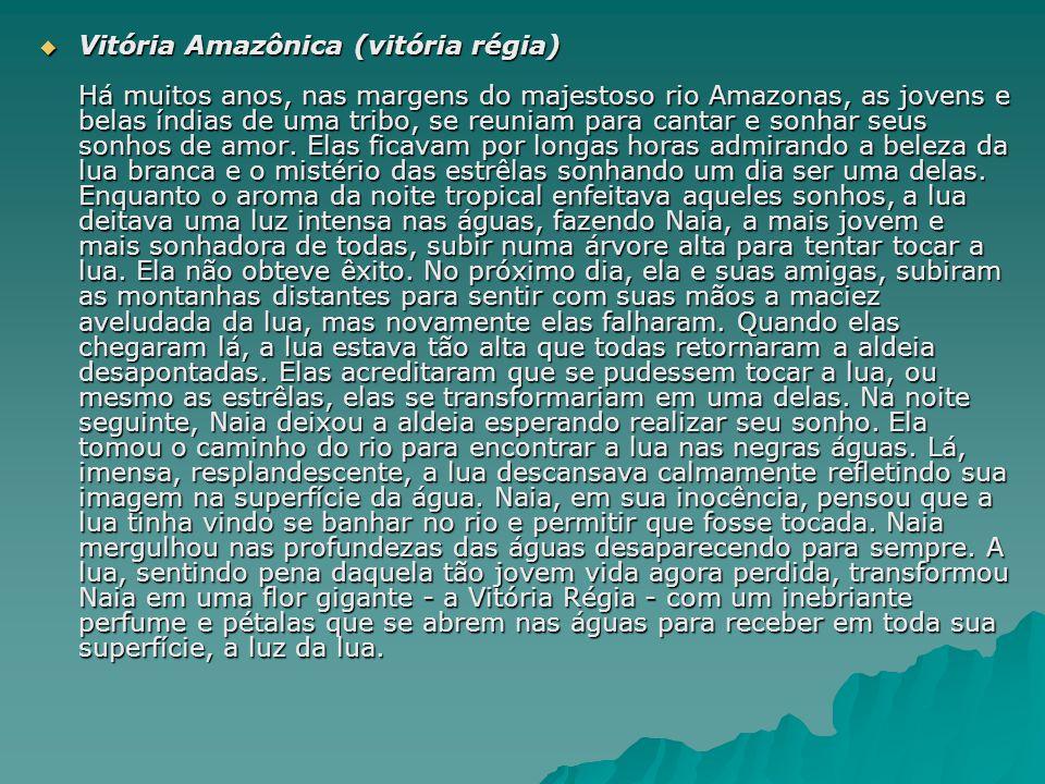 Vitória Amazônica (vitória régia) Há muitos anos, nas margens do majestoso rio Amazonas, as jovens e belas índias de uma tribo, se reuniam para cantar