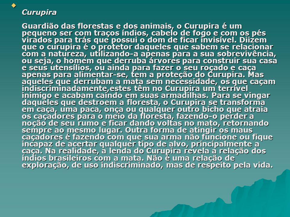 Curupira Guardião das florestas e dos animais, o Curupira é um pequeno ser com traços índios, cabelo de fogo e com os pés virados para trás que possui