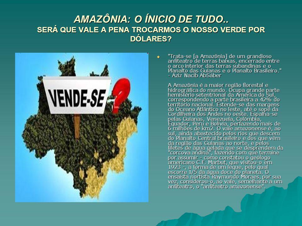 AMAZÔNIA: O ÍNICIO DE TUDO.. SERÁ QUE VALE A PENA TROCARMOS O NOSSO VERDE POR DÓLARES?