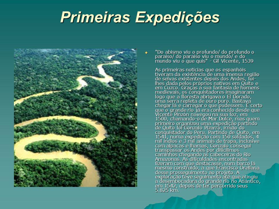 Vitória Amazônica (vitória régia) Há muitos anos, nas margens do majestoso rio Amazonas, as jovens e belas índias de uma tribo, se reuniam para cantar e sonhar seus sonhos de amor.