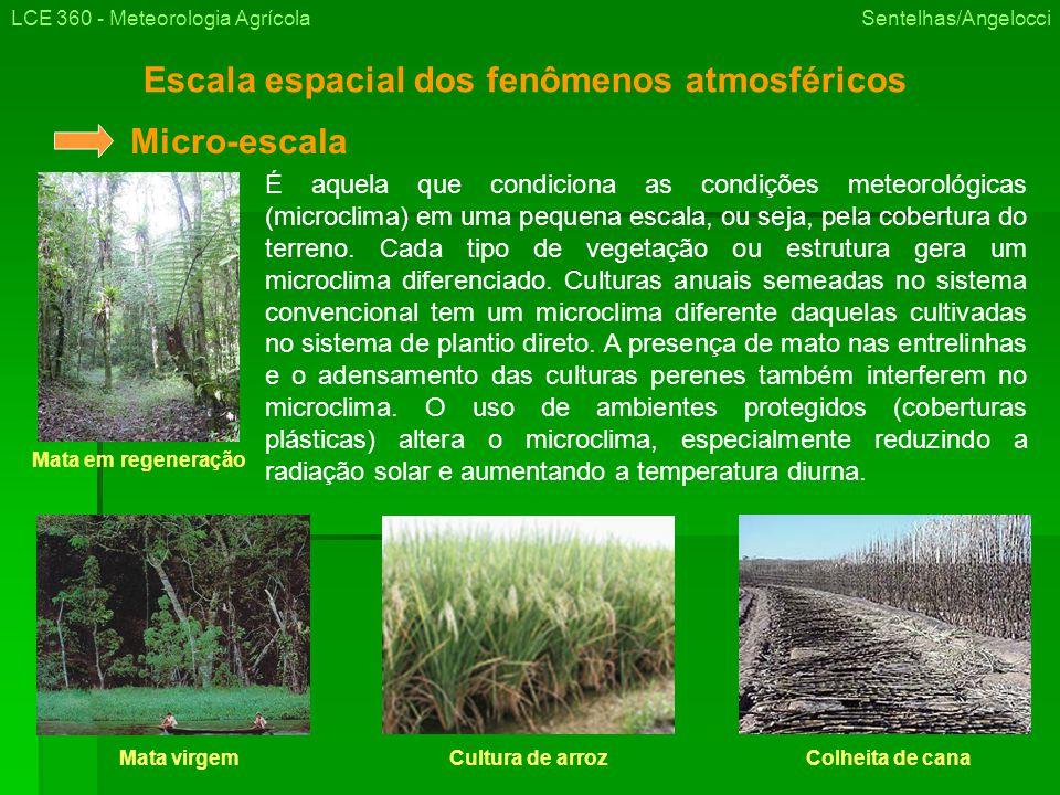 Escala espacial dos fenômenos atmosféricos LCE 360 - Meteorologia Agrícola Sentelhas/Angelocci É aquela que condiciona as condições meteorológicas (microclima) em uma pequena escala, ou seja, pela cobertura do terreno.