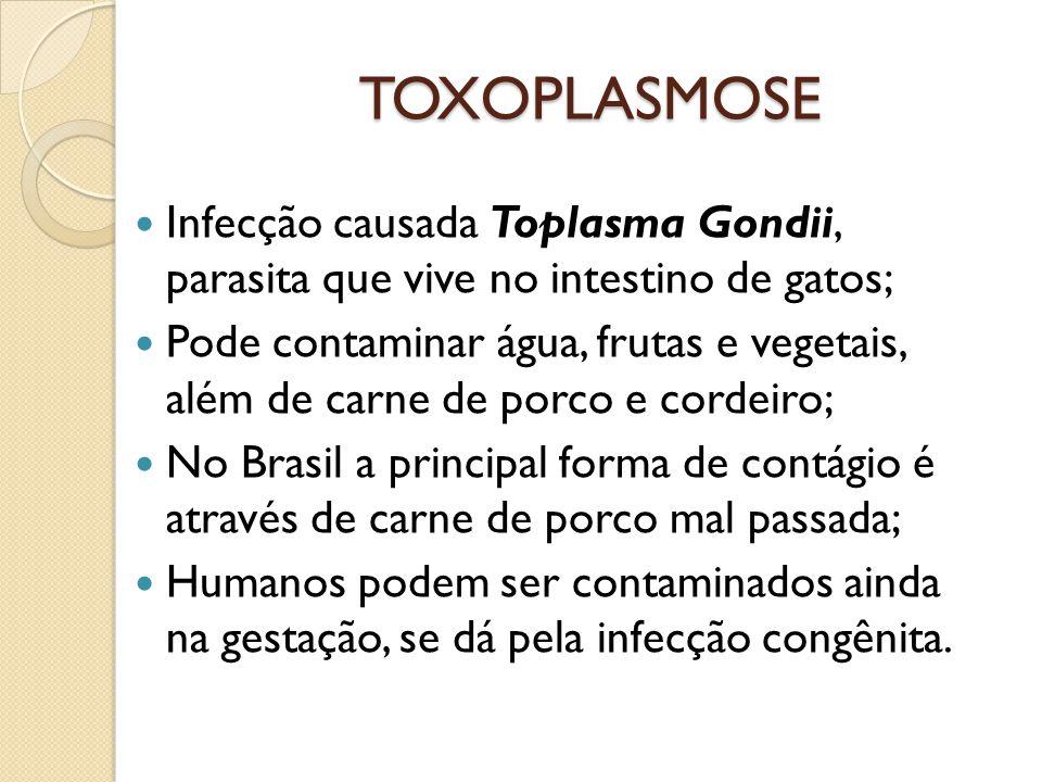 TOXOPLASMOSE Infecção causada Toplasma Gondii, parasita que vive no intestino de gatos; Pode contaminar água, frutas e vegetais, além de carne de porc