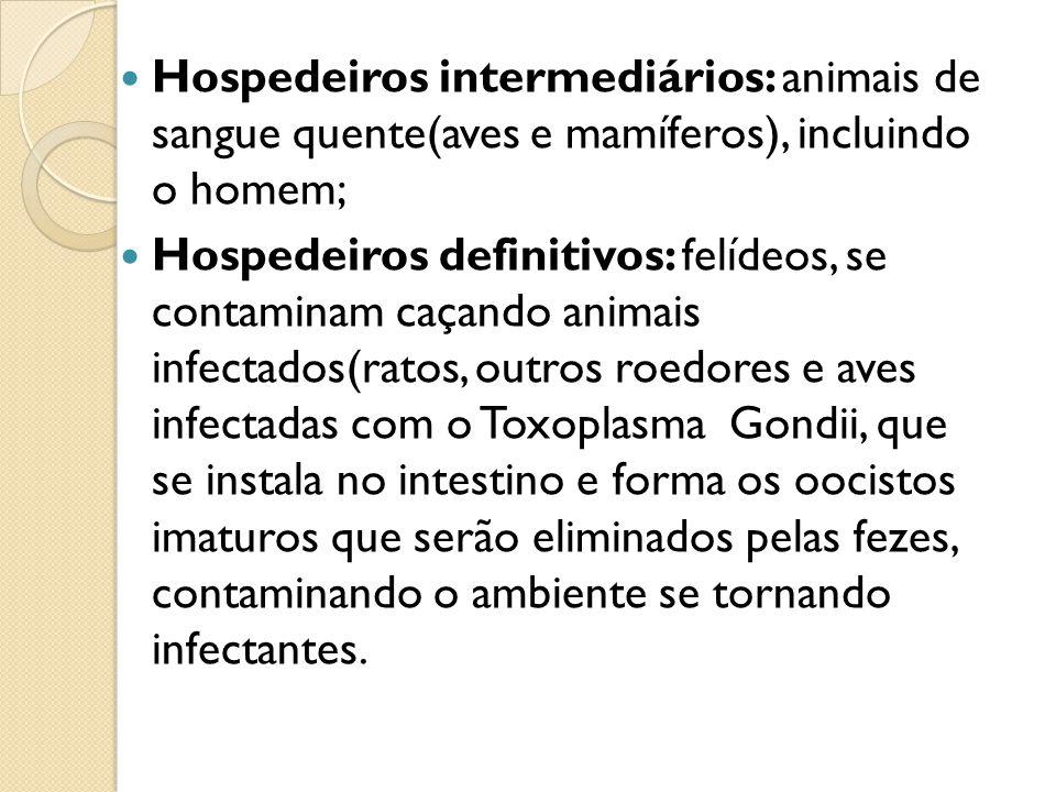 TOXOPLASMOSE OCULAR ASSOCIADA A RETINOCOROIDITE