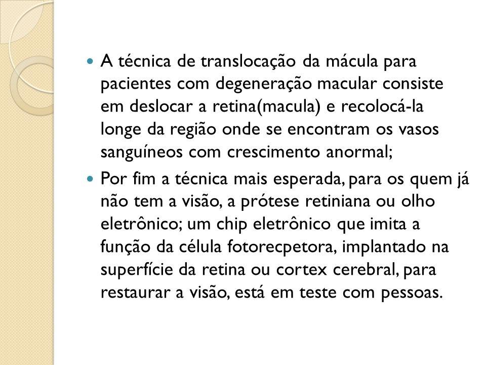 PRINCIPAL CAUSADOR DA TOXOPLASMOSE