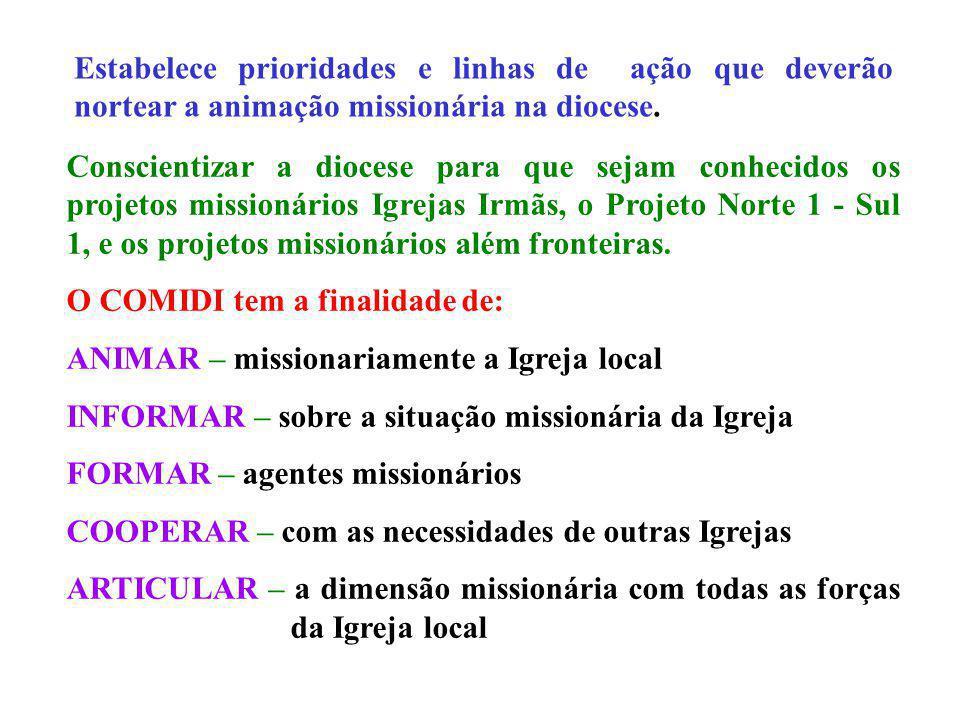 Estabelece prioridades e linhas de ação que deverão nortear a animação missionária na diocese. Conscientizar a diocese para que sejam conhecidos os pr