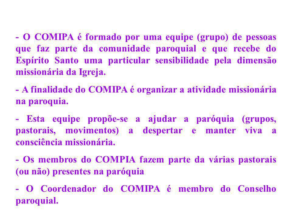 - Em colaboração com todas as pastorais e em comunhão com o pároco, o COMIPA tem o dever de animar missionariamente a paróquia, em sintonia com as orientações do COMIDI.