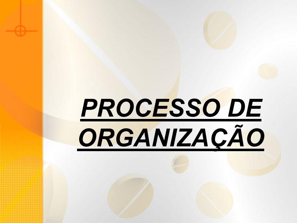 PROCESSO DE ORGANIZAÇÃO