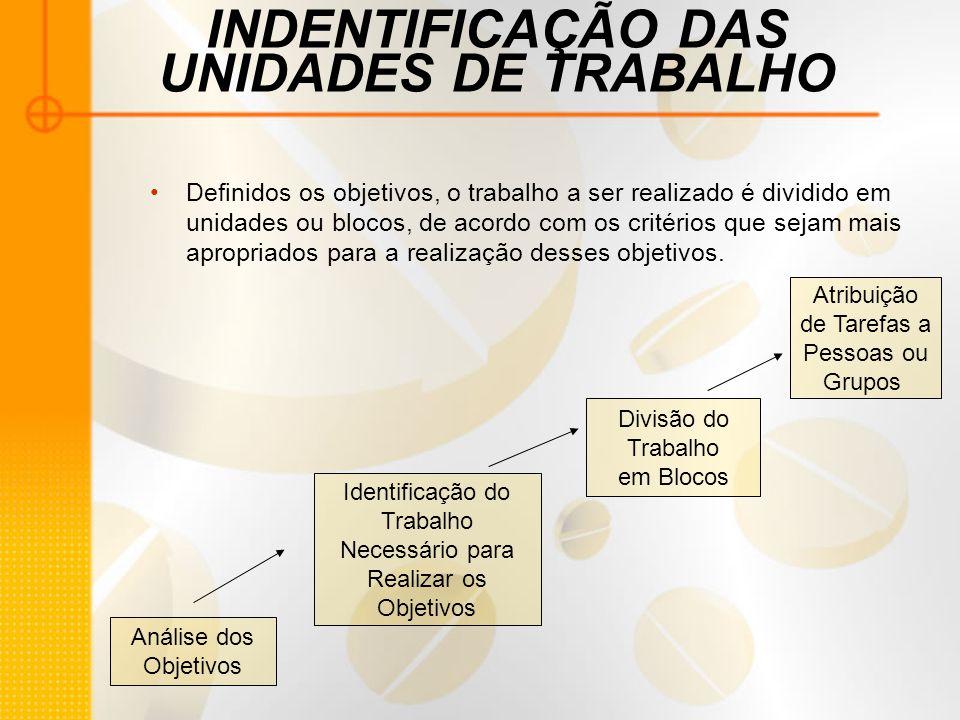 INDENTIFICAÇÃO DAS UNIDADES DE TRABALHO Definidos os objetivos, o trabalho a ser realizado é dividido em unidades ou blocos, de acordo com os critério