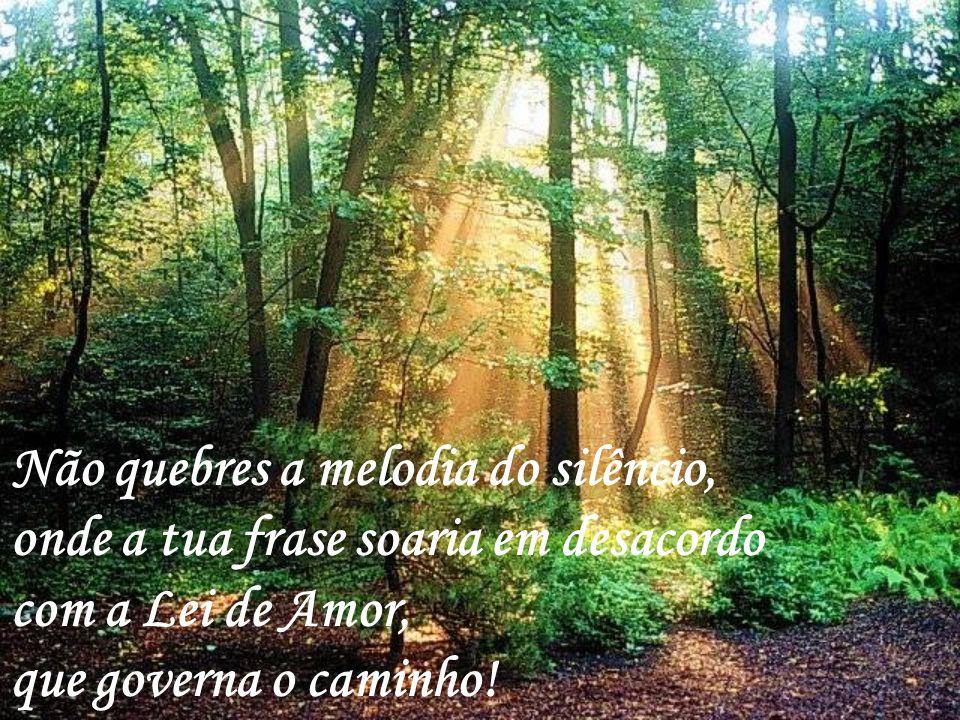 Não quebres a melodia do silêncio, onde a tua frase soaria em desacordo com a Lei de Amor, que governa o caminho!