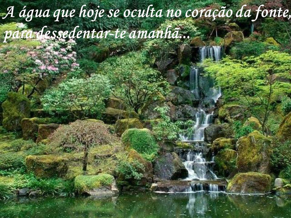 A água que hoje se oculta no coração da fonte, para dessedentar-te amanhã...