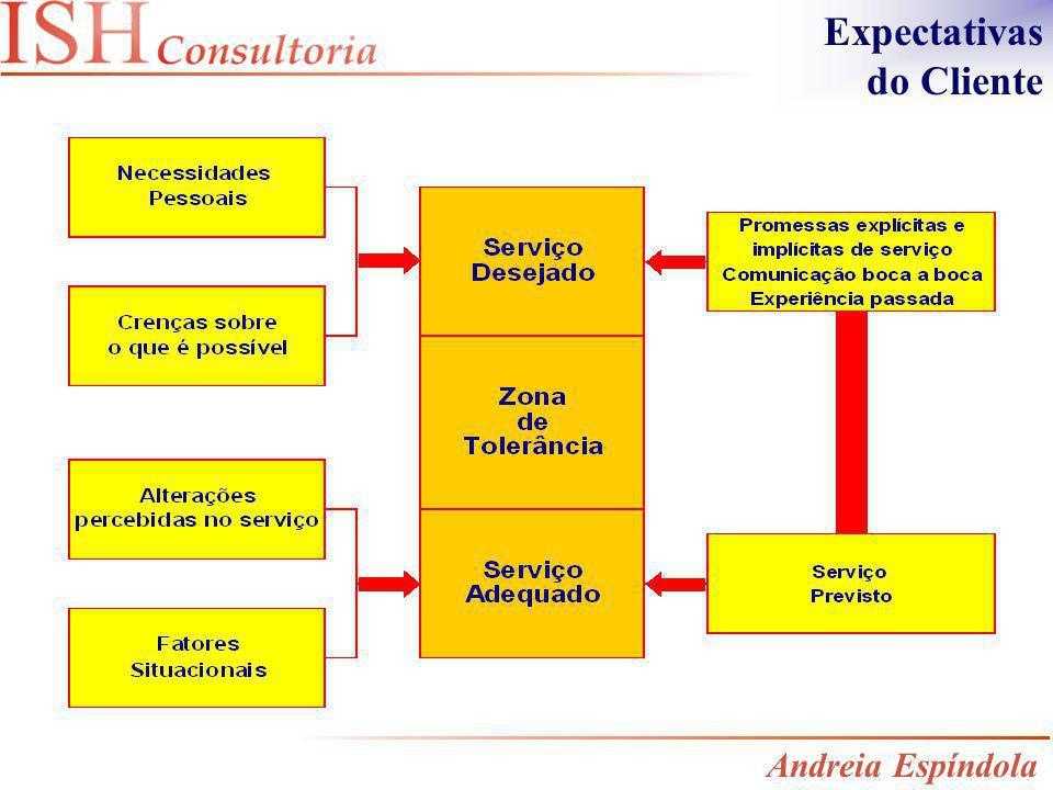 Expectativas do Cliente Andreia Espíndola
