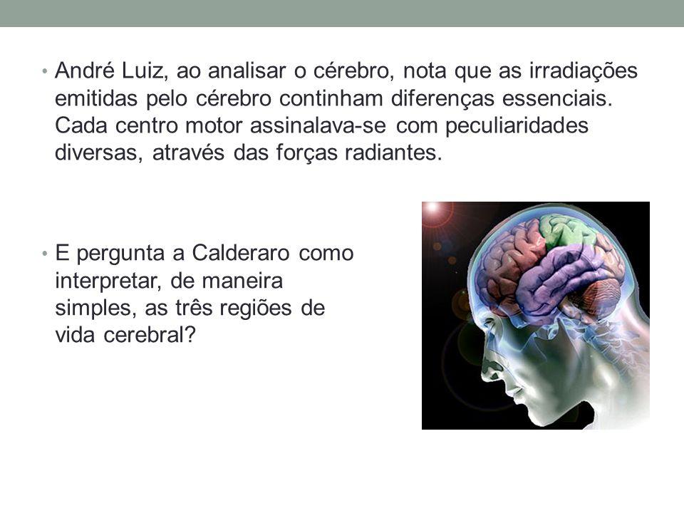 André Luiz, ao analisar o cérebro, nota que as irradiações emitidas pelo cérebro continham diferenças essenciais. Cada centro motor assinalava-se com