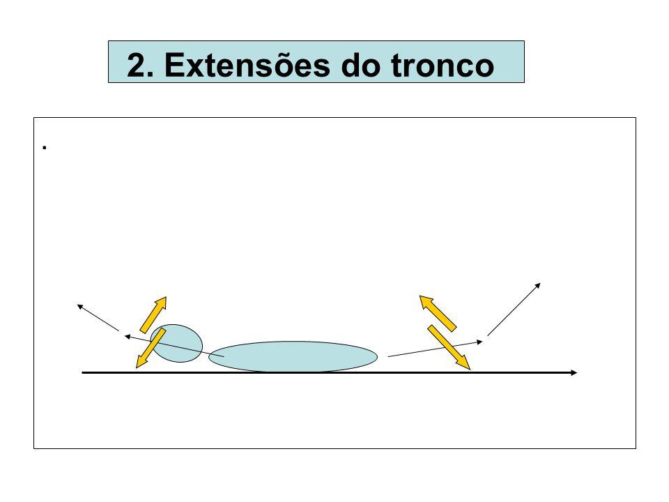 .. 2. Extensões do tronco