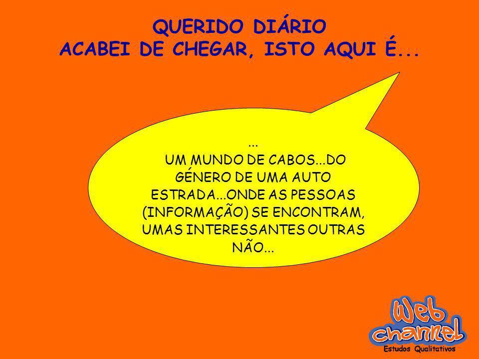 QUERIDO DIÁRIO ACABEI DE CHEGAR, ISTO AQUI É...... UM MUNDO DE CABOS...DO GÉNERO DE UMA AUTO ESTRADA...ONDE AS PESSOAS (INFORMAÇÃO) SE ENCONTRAM, UMAS
