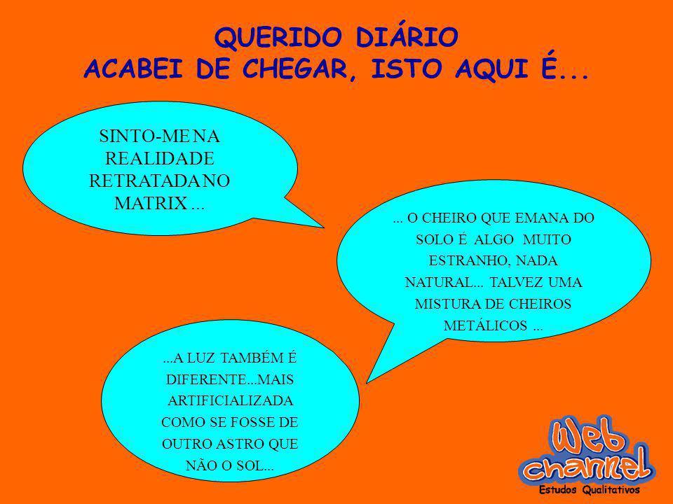 QUERIDO DIÁRIO ACABEI DE CHEGAR, ISTO AQUI É... SINTO-ME NA REALIDADE RETRATADA NO MATRIX...... O CHEIRO QUE EMANA DO SOLO É ALGO MUITO ESTRANHO, NADA
