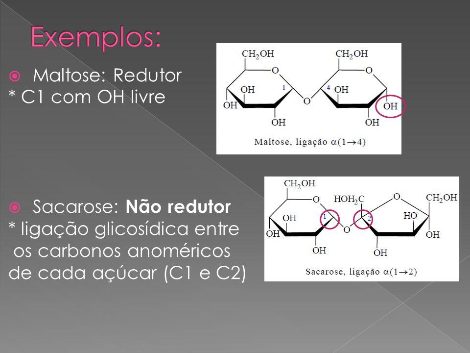 Maltose: Redutor * C1 com OH livre Sacarose: Não redutor * ligação glicosídica entre os carbonos anoméricos de cada açúcar (C1 e C2)