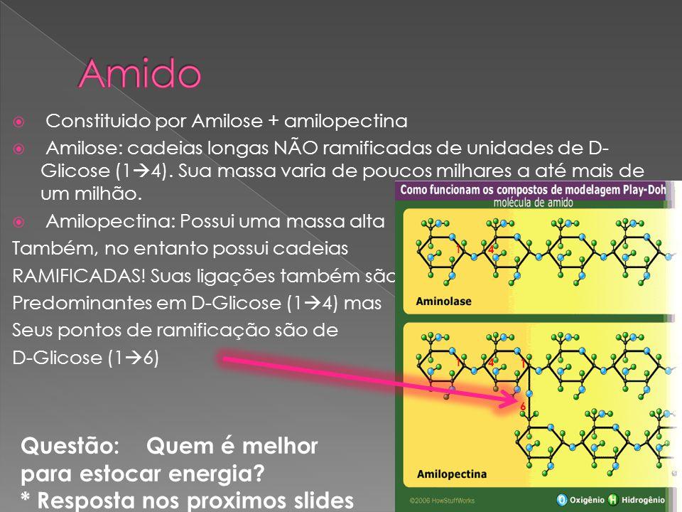 Constituido por Amilose + amilopectina Amilose: cadeias longas NÃO ramificadas de unidades de D- Glicose (1 4). Sua massa varia de poucos milhares a a