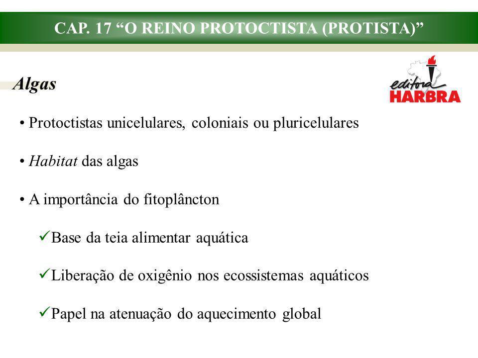 CAP. 17 O REINO PROTOCTISTA (PROTISTA) Algas Protoctistas unicelulares, coloniais ou pluricelulares Habitat das algas A importância do fitoplâncton Ba