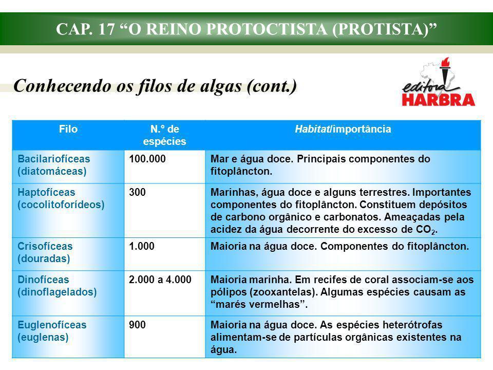 CAP. 17 O REINO PROTOCTISTA (PROTISTA) Conhecendo os filos de algas (cont.) FiloN.° de espécies Habitat/importância Bacilariofíceas (diatomáceas) 100.