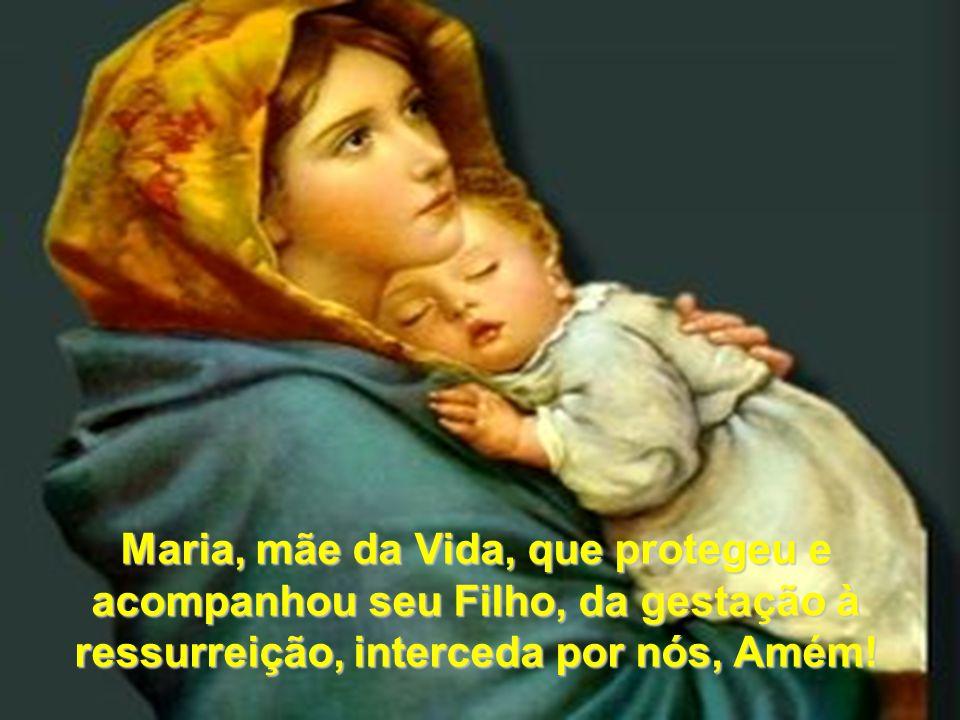 Maria, mãe da Vida, que protegeu e acompanhou seu Filho, da gestação à ressurreição, interceda por nós, Amém!