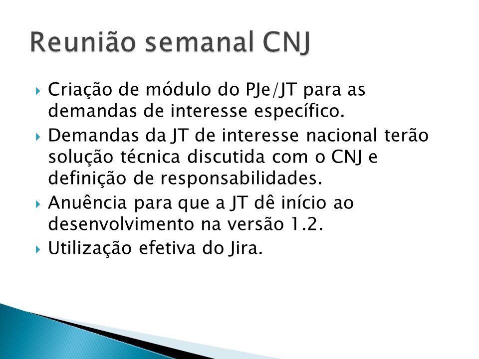 Criação de módulo do PJe/JT para as demandas de interesse específico.