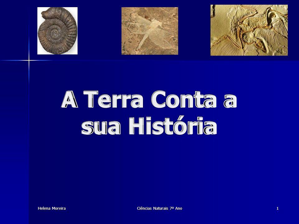 Helena Moreira Gingko Ciências Naturais 7º Ano22