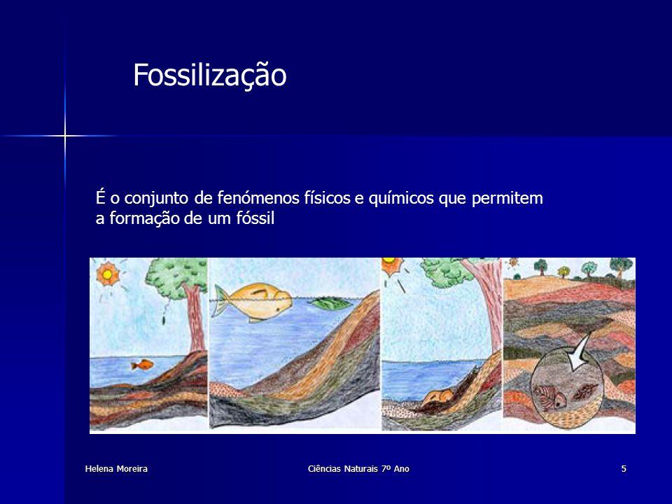 Etapas de formação de um fóssil Helena MoreiraCiências Naturais 7º Ano6