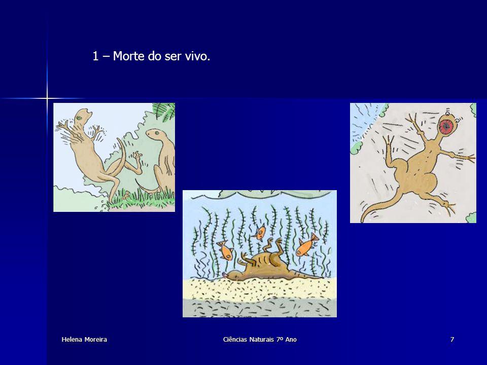2 – Deposição de sedimentos sobre os seus restos mortais.