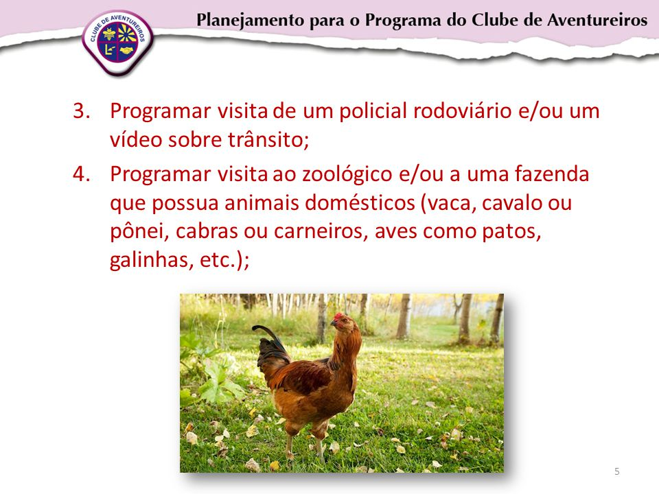 3.Programar visita de um policial rodoviário e/ou um vídeo sobre trânsito; 4.Programar visita ao zoológico e/ou a uma fazenda que possua animais domésticos (vaca, cavalo ou pônei, cabras ou carneiros, aves como patos, galinhas, etc.); 5