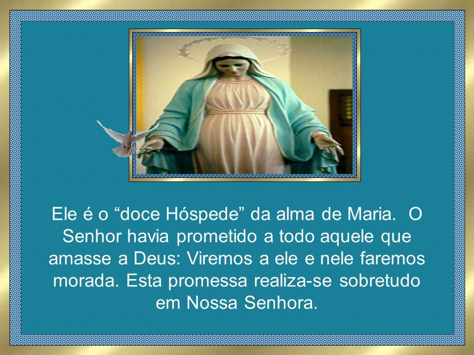 Ele é o doce Hóspede da alma de Maria.